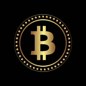 If you want to invest in bitcoin in 2021, then you must know some things before that
